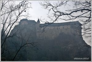 Castle in the Mist by urszulac