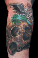 skull 1 by scoot75