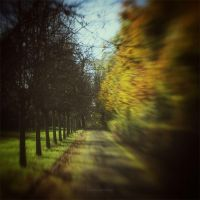 ... but this is still the fall by VisitingFahrrad