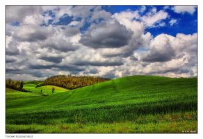 Tuscany Rolling Hills by Marcello-Paoli