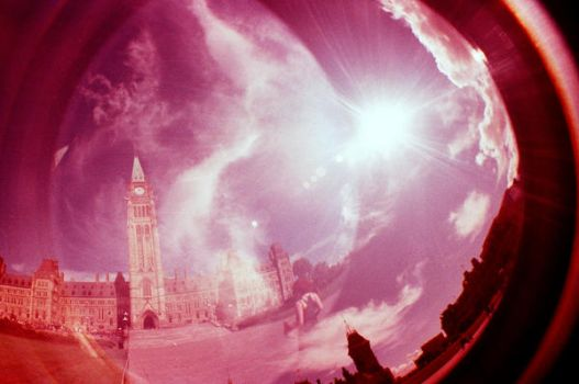 Something like a dream by lomography