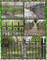 The Iron Fence I by skwonk-stock