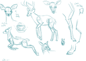 Deer Study by Shaiza7