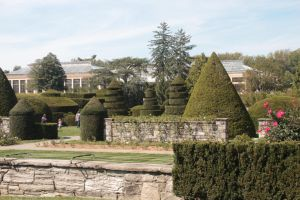 Topiary Garden by jswis