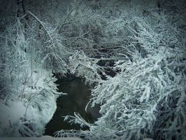 River under the snow branches by OlgaCherkasova