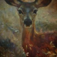 doe detail by snellynell
