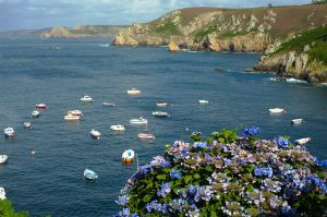 boats and flowers by joe279