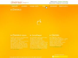 Orange webdesign by DESIGNindustry