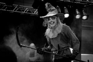 FACTS 2010 - Scarecrow cosplay by Boredman