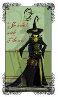 The wicked witch of the west. by clv