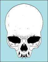Human Skull by Karbacca