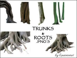 Tree Trunks and Roots - png's by spacenewt