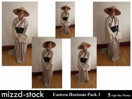 Eastern Horizons Pack 3 by mizzd-stock