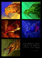 Dragon sketches commission by Amisgaudi