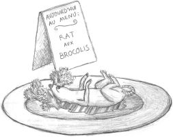 Rat aux brocolis by k-net