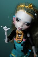 Monster High Repaint 9 - 1 by Armeleia