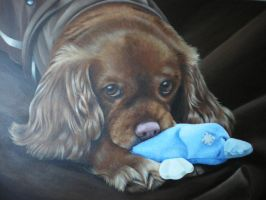 Reilly by petportraitman