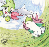 Shaymin and Skymin by Frog-of-Rock