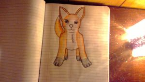 Random almost finished fox drawing. by wolflover1020