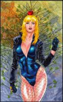 Black Canary by orphanshadow