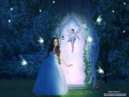 Passage into the world of fairies by vaniapaiva