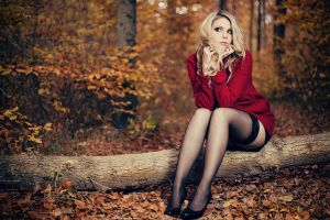 Red Riding Hood by YannickDesmet