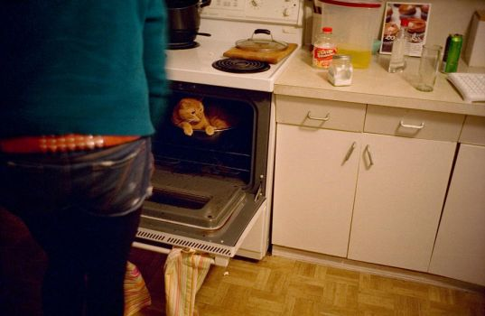 oven cat by dersunde