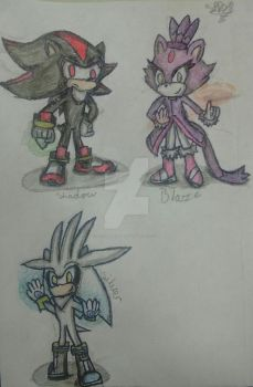 Shadow,Silver and Blaze .3. by LittleDash28