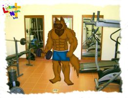 Braigh in the gym by Lickan-Nicol