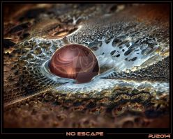 No escape by pulsar69fr