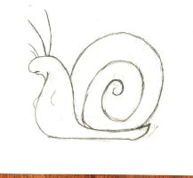 snail by theGman0
