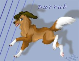 Burrub by ClaretWolf