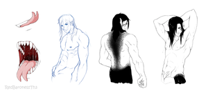 Seth's body studies by RedBaronessThe3