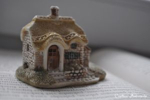 Little house by CountessAudronasha