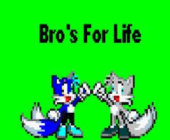 Bro's for life by CozandTails