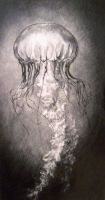 Le Jellyfish by clouded-ambition