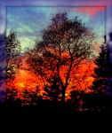 Sky on Fire in Fall by surrealistic-gloom