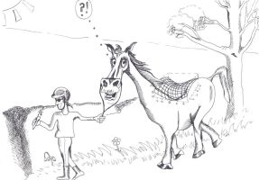 Horse Cartoon to demonstrate 3D saddlepoint graph. by Anita-Sanderson