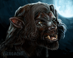 Werewolf Wednesday - In Transition by Viergacht