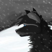 The Snowstorm by CloudedCheetah