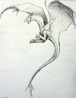Biro wyvern by Hogia