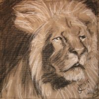 lion 5.15.11 by jrlincoln9