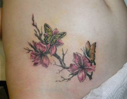 Butterfly on Cherry by derechteBigfoot