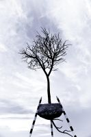 Tree of Life 02b by alvse
