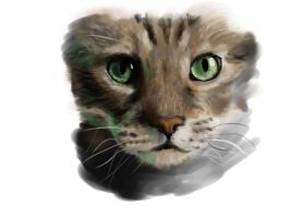 Cat with Green Eyes by BenjaminKanderson