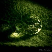 Crocodile's tear by fholger