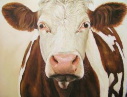 cow by hel62