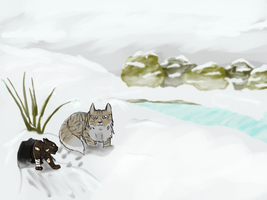 Snowy Wonders by Bloodshadewolves