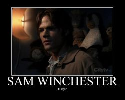 Sam Winchester- O rly by Zehot-guys-are-hot