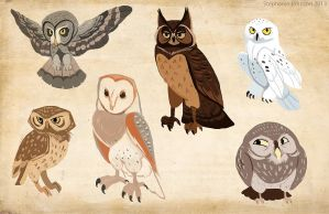 Bunch O' Owls by Ifus